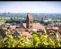 Eguisheim Live