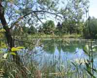 Camp Au Clair Ruisseau