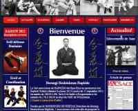 Horangi Hoshinkwan Hapkido Club