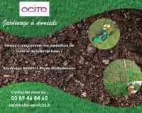 Ocito Services A la Personne