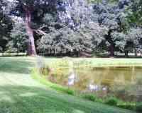 Schoppenwihr Natural Park