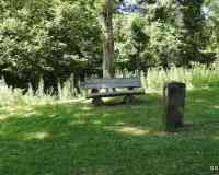 Réserve Naturelle de la Forêt d'Erstein