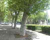 Cours Sablon