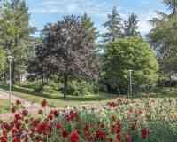 Drapeau Park