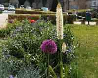 Carmélites Garden