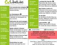 Cardamines et Libellules