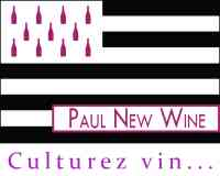 Paul New Wine PnW