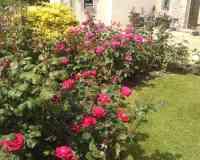 Au Jardin de Créach Avel