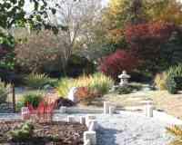 Bonsai - Le jardin du levant