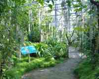 Garden National Botanical Conservatory of Brest
