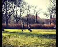 Lergravsparken
