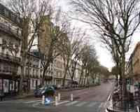 Rue des Réservoirs (Versailles)