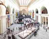 Muséum Field (The Field Museum)