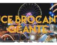 Les puces du Luna Park