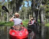 Beyond the Bayou Tours