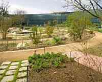 Jardin botanique Henri-Gaussen