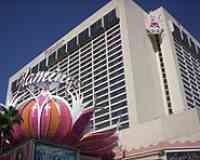 Flamingo Las Vegas