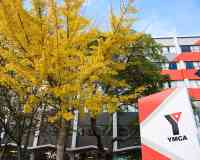 YMCA Auckland Hostel