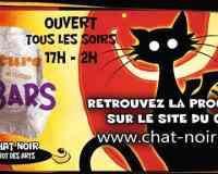 Le Chat Noir - Bistrot des Arts à Nantes