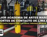 Peru Fight Academy Lima Norte