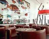 Darwin's Café