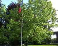 Parc Albert-Michallon