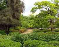 Parc Federico García Lorca (Séville)