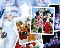 Disney Vacations Planner