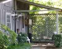 Fema Guesthouse
