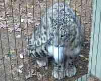Memphis Zoo Aquarium