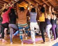 8 Limbs Yoga Centers